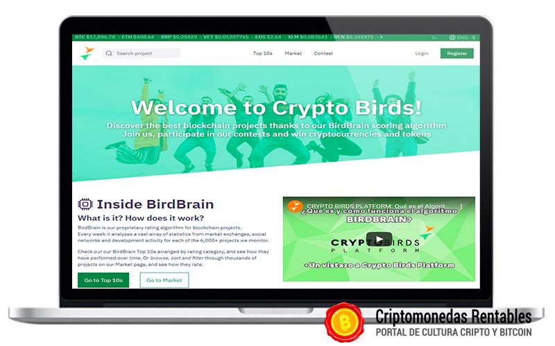 como-encontrar-criptomonedas-para-invertir-con-cryptobirds