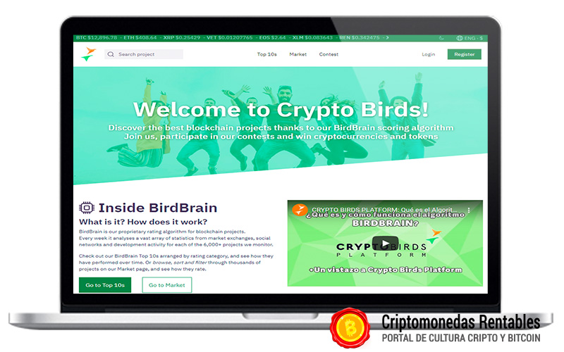 como-encontrar-criptomonedas-para-invertir-con-cryptobirds