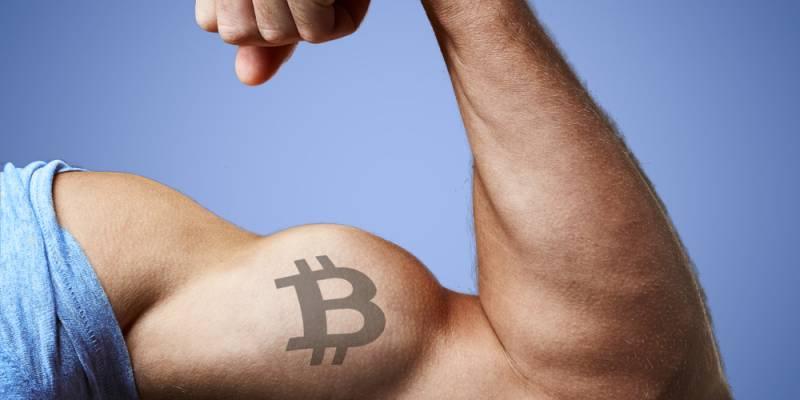 Ultimo momento! Bitcoin necesita más amigos del gimnasio en 2020 . Documento exclusivo