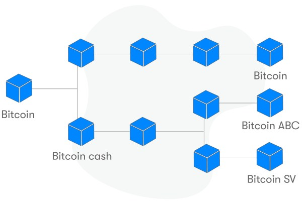 que-es-bitcoin-cash-fork