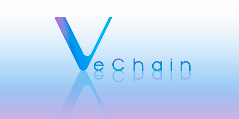 VeChain review