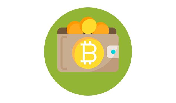 wallets-bitcoin-cripto